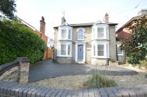 4 bedroom semi detached property in New Street, Halstead...