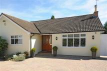 4 bed Detached Bungalow for sale in Penn Road, Park Street...