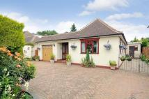 Detached Bungalow in Hawfield Gardens...