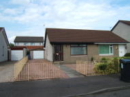 Semi-Detached Bungalow to rent in 34 Bryce Avenue, Carron...