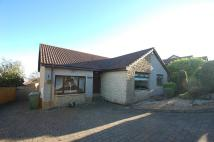 Detached Bungalow for sale in Benshuna...