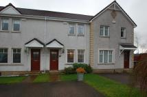 Terraced home for sale in Willison Crescent...