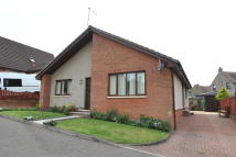 Detached Bungalow in 3 High Academy Grove...