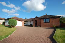 3 bedroom Detached Bungalow for sale in 44 HARTWOOD ROAD...