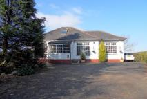 3 bedroom Detached Bungalow for sale in Auchincruive, Ayr, KA6