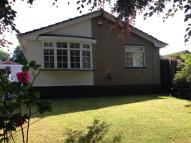 Detached Bungalow to rent in Wethersfield Road...