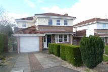 4 bed Detached house in Laurel Way, Crawcrok...