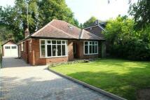 Detached Bungalow for sale in Chapel Lane, Hale Barns