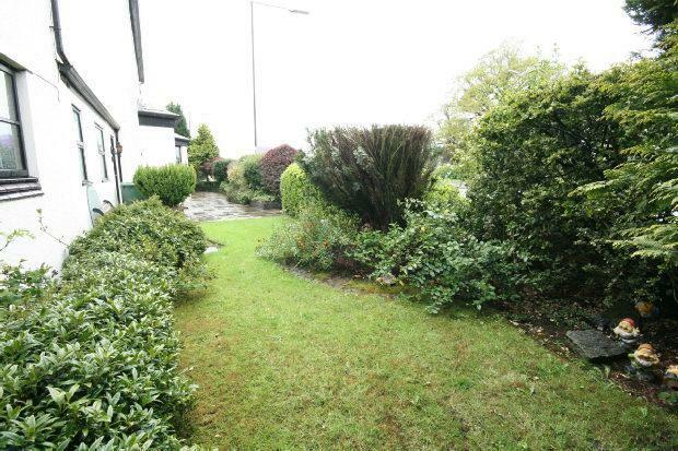 Rear Gardens 2