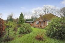2 bedroom Detached Bungalow for sale in Crowborough Road, Nutley