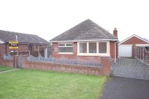 Detached Bungalow for sale in Carterville Close, Marton