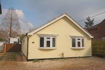 Bungalow for sale in Whitehouse Road, Woodcote