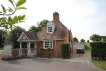 Detached property to rent in Mongewell...