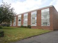 1 bedroom Flat to rent in Broome Court...
