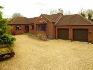 Detached Bungalow in Rooklands, Scotter