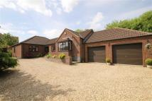 3 bedroom Detached Bungalow for sale in Rooklands, Scotter