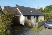 Detached Bungalow to rent in Pound Meadow, Okehampton