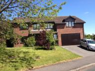 1 bed Flat to rent in Rockfield Glade...
