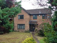 4 bedroom Detached house to rent in Cornflower Close...