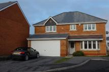 4 bedroom Detached property to rent in Bryn Dreinog...