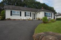 Detached Bungalow for sale in Waunfarlais Road...