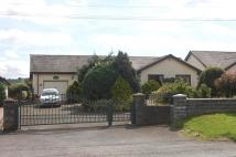 3 bed Detached Bungalow in Rhosmaen, Llandeilo