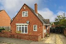 3 bed Detached Bungalow in Conifer Close, Oxford