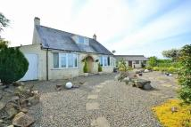 Detached Bungalow for sale in Nr Camrose, Haverfordwest