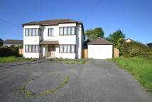 7 bedroom Detached property for sale in Cardigan Road...