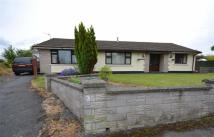4 bed Detached Bungalow in Hook