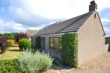 Detached Bungalow for sale in Milford Haven