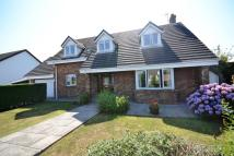 5 bed Detached Bungalow in The Grove, Steynton...