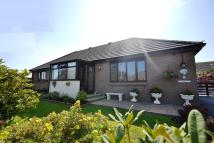 Detached Bungalow in The Grove, Milford Haven