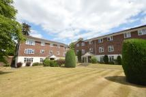1 bedroom Flat to rent in Weybridge, KT13