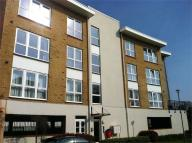 Flat to rent in Romulus Road, Gravesend...