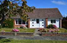 Detached Bungalow for sale in Eastergate Close...