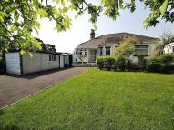 Little Park Detached Bungalow for sale