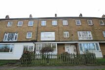 House Share in Wellbury Terrace...