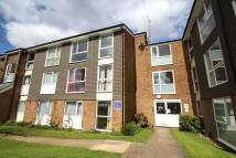 Flat to rent in Cuffley Court...