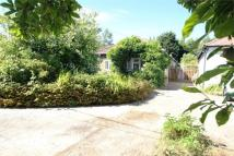 Detached Bungalow in Station Road, Hellingly...
