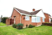 Semi-Detached Bungalow for sale in Hailsham