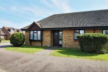2 bedroom Semi-Detached Bungalow to rent in The Cedars, Hailsham...
