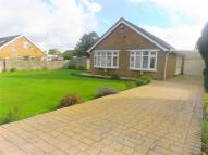 4 bed Detached Bungalow in 29, Maes Y Gwernen Drive...