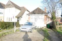 Detached Bungalow in Great Cambridge Road...