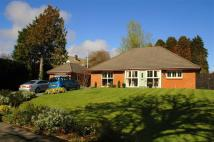 Detached Bungalow for sale in The Spinney, Caswell...
