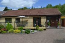 Bryngolwg Bungalow Detached Bungalow for sale