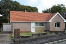 20 Detached Bungalow for sale
