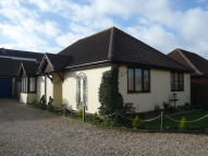 Detached Bungalow for sale in Pleasant Mews...