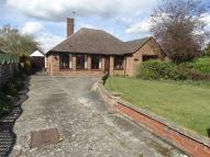 3 bedroom Detached Bungalow for sale in Melrose Road, CO5