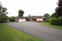 5 bed Detached Bungalow for sale in The Croft, High Barnet...